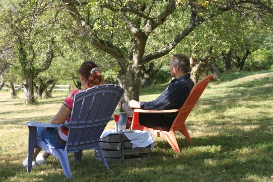 Maxwell Creek Inn Bed & Breakfast: Relaxing in the orchard