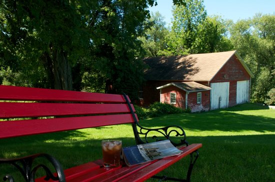 Maxwell Creek Inn Bed & Breakfast: Relax on the bench under a tree