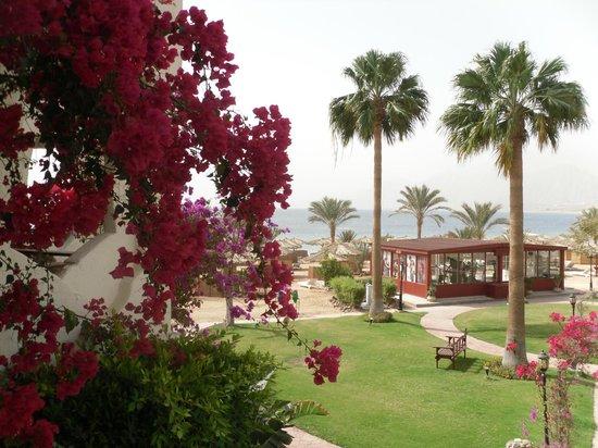 Swiss Inn Resort: Blick von unserem Zimmer im 1. Stock auf den Strand und das Meer