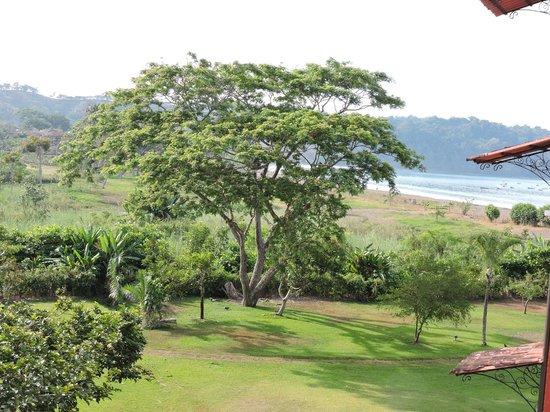 Los Suenos Marriott Ocean & Golf Resort: wake up to a beautiful day!