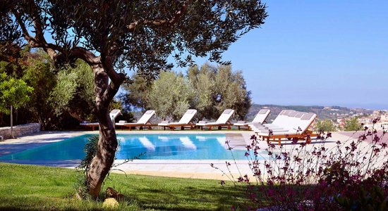 Eliathos Archanes Residence Houses: SWIMMING POOL INSIDE THE OLIVE TREES
