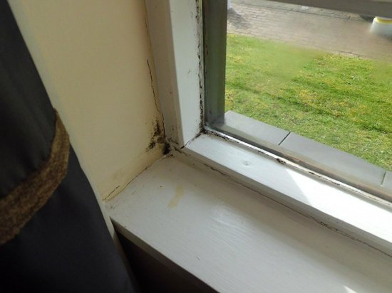 Ramada Dover: Dampness, rot