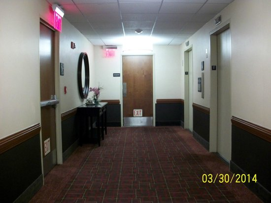 Hampton Inn Manhattan-Times Square North: 11th Floor Elevators