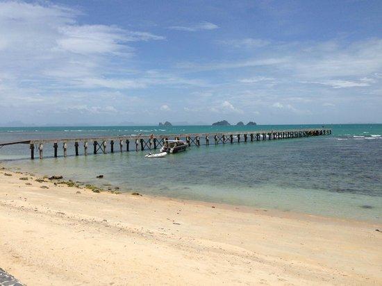 InterContinental Samui Baan Taling Ngam Resort : ビラの前の芝生からみた海