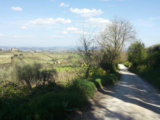 Guardastelle: vista dal sentierino che porta a san gimignano_3