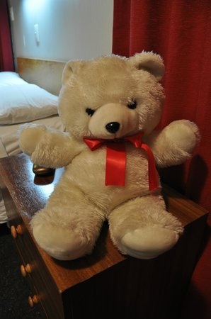 Grange Motor Lodge : Teddy!
