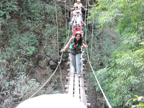 Adventure Park and Hotel Vista Golfo: monkeys on the bridge