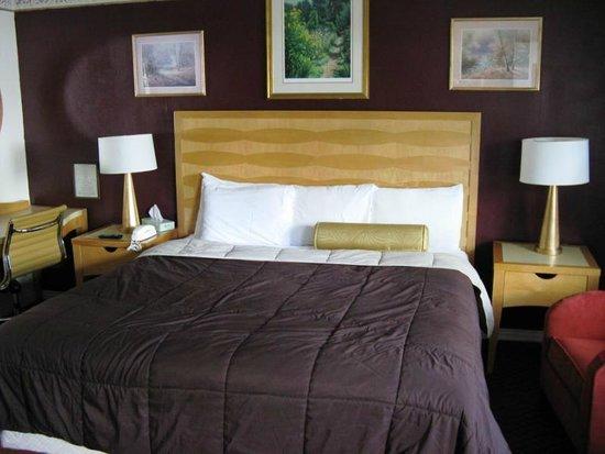 Northside Motel: KIng Size Bed room