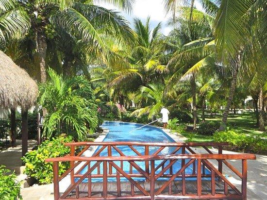 El Dorado Royale, by Karisma: Spectacular vegetation