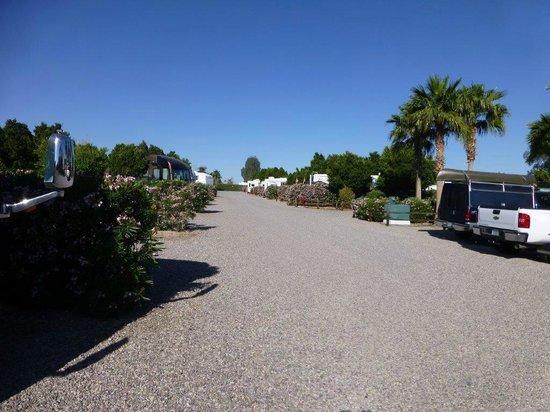 Desert View RV Resort: Inside park