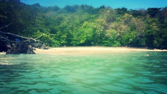 Parador Resort and Spa: Playa Biezans (justo al lado del hotel)
