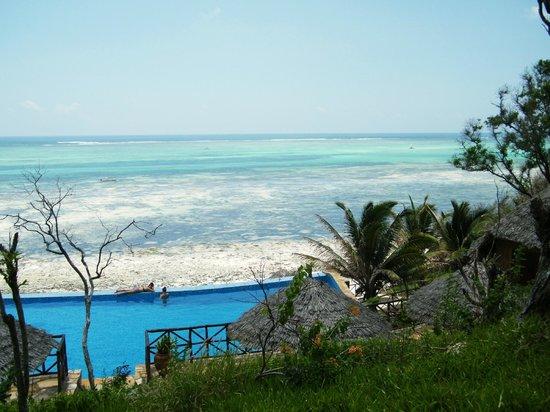 Ras Michamvi Beach Resort : Infinity pool at Ras