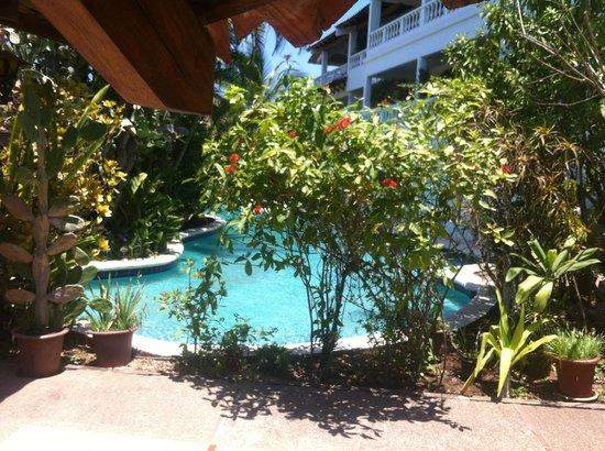 La Colina : Pool