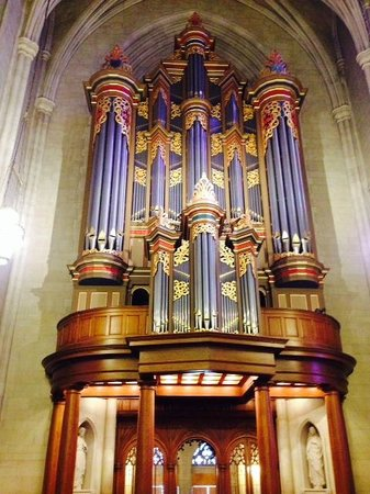 Duke University Chapel: A view of the organ pipes when you enter the chapel and then look behind you.