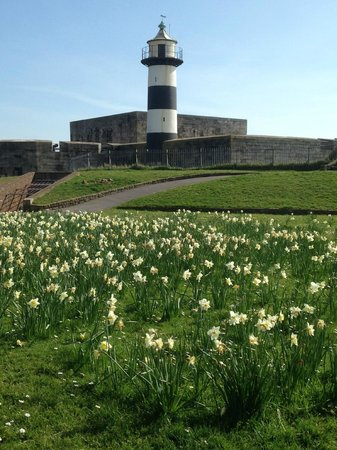 Southsea Castle: The Lighthouse In Spring