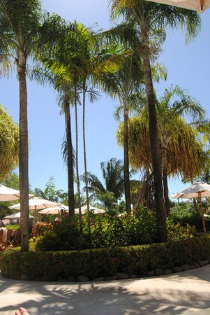The Westin Golf Resort & Spa, Playa Conchal: grounds