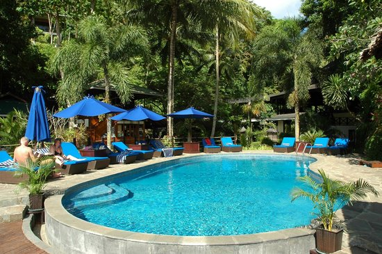 Lembeh Resort: Pool area