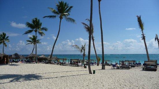 Punta Cana Princess All Suites Resort & Spa: Beach