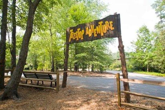 Treetop Adventure Zi Line Obstacle Course Callaway Gardens Picture Of Callaway Resort