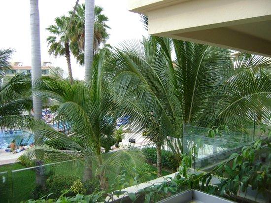 Dreams Puerto Aventuras Resort & Spa: wonderful view