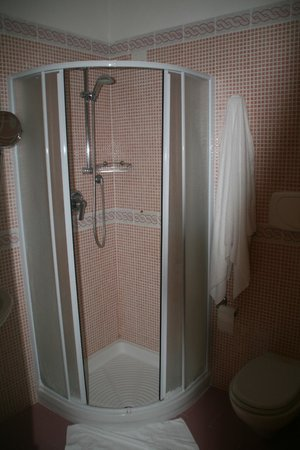 Hotel Europa: Tiny shower in the large bathroom