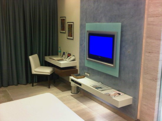 Residency Hotel Andheri: TV
