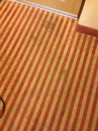 Econo Lodge Inn & Suites Near Legoland: Carpet needs to be clean