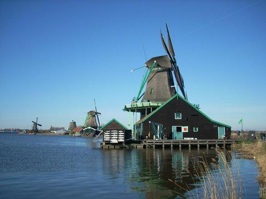 Verschilende molens, waaronder een mosterd molen op de Zaanse Schans
