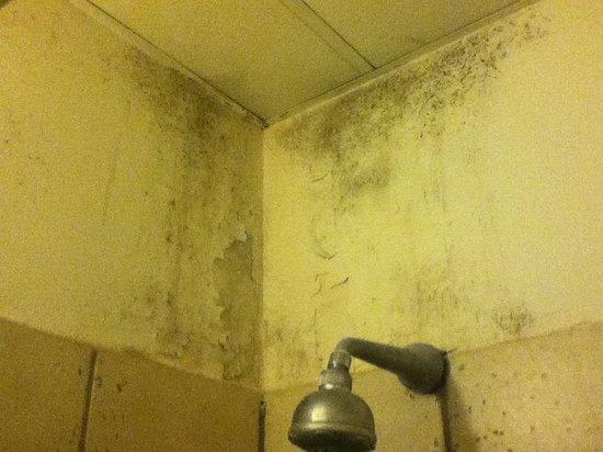 Hotel Acropoli : Die Dusche... Besser man lässt sie aus.