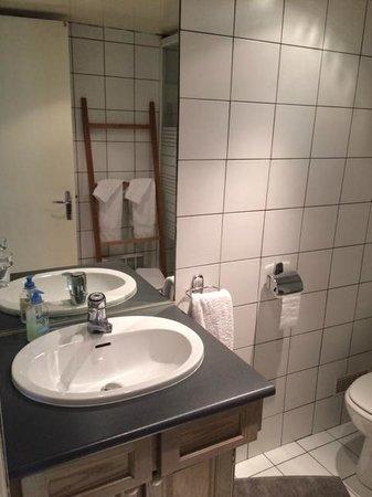 Bed and Breakfast Delareynie : Bathroom