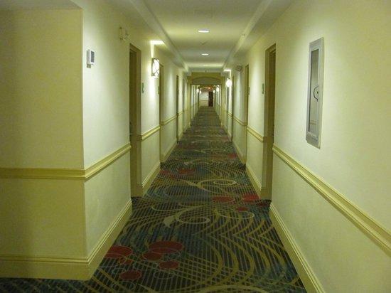 Holiday Inn Coral Gables - University: Corredor sem cheiro de cigarro