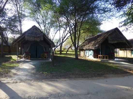 Tarangire Safari Lodge: Lodge tents