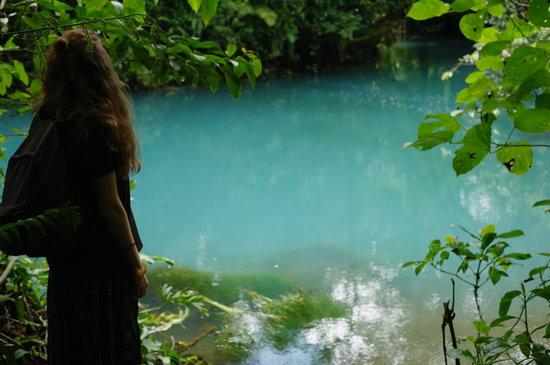 Finca Verde Lodge: National Park Tenorio