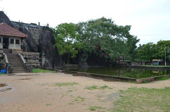 Isurumuniya Temple: Пруд у храма
