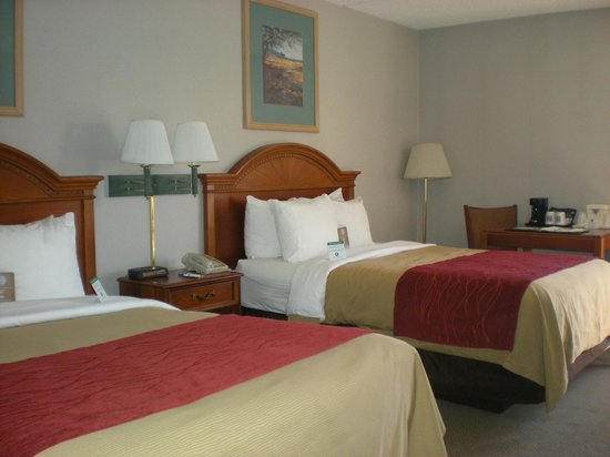 Quality Inn South: Guest Double