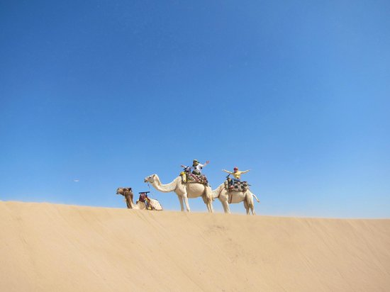 Ranch de Diabat: Dramatic dune