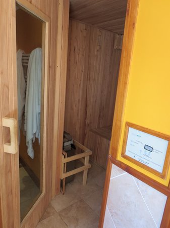 Charming Luxury Lodge & Private Spa : the sauna