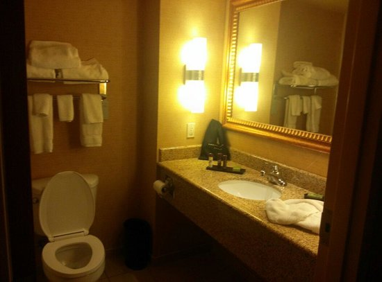 Embassy Suites by Hilton East Peoria - Hotel & RiverFront Conf Center: The bathroom