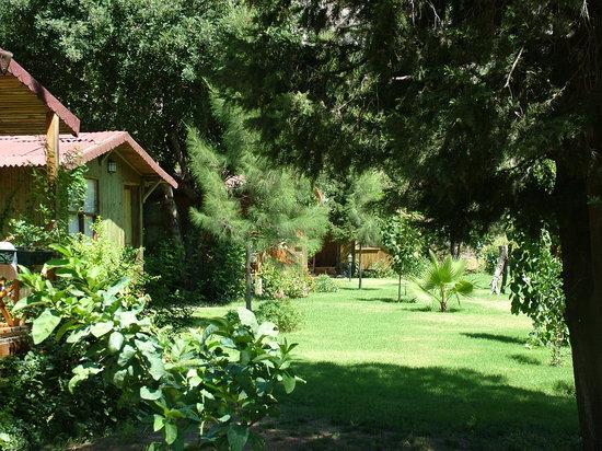 Kibala Hotel: Bahçe