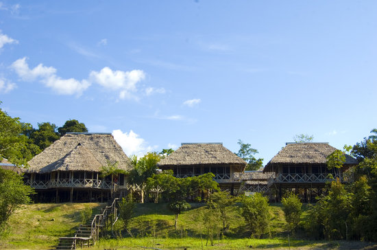 Amazonia Expeditions' Tahuayo Lodge: Amazonia Expeditions Lodge