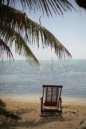 Sin Duda Villas: Veiw of the beach from the room