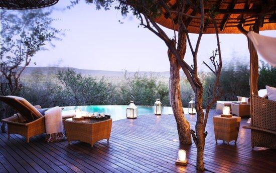 Molori Safari Lodge : Accommodation