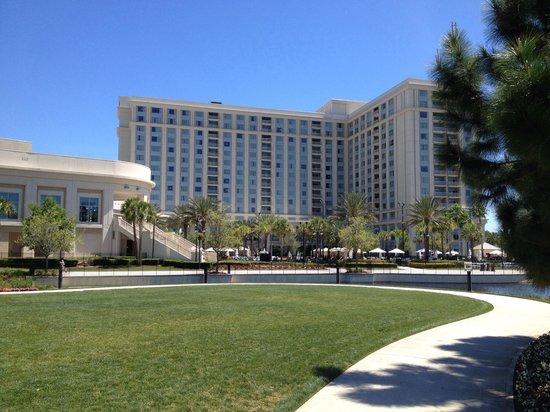 Waldorf Astoria Orlando: Great hotel!