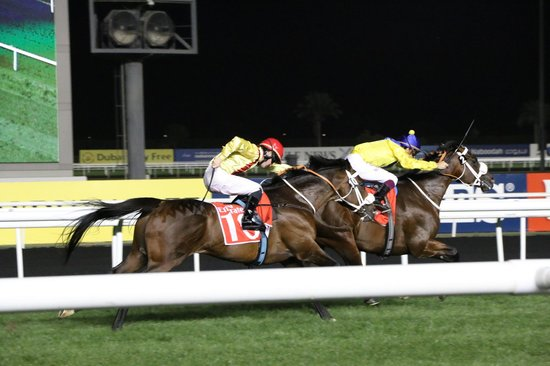 Meydan Racecourse: The big finish!