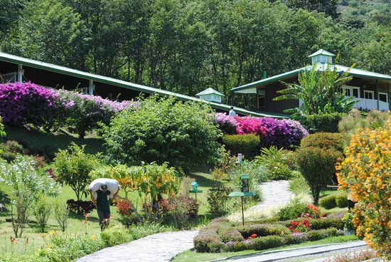 Finca Lerida: grounds