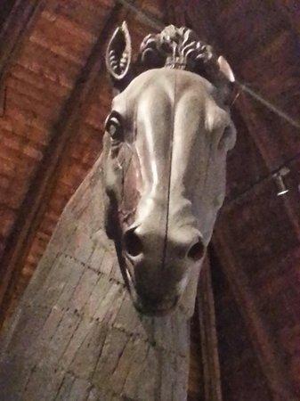 Palazzo della Ragione: Cavallo