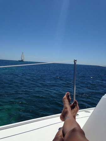 Marauder Sailing Charters - Private Tours: Life is good when you sail!