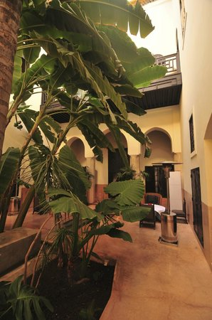 Riad 72: The courtyard