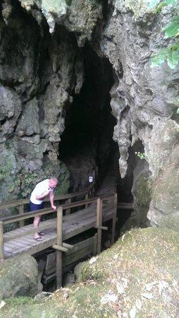 Kawiti Caves : Kawiti Glow Cave Entrance