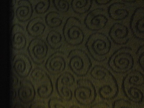 Super 8 Ormond Beach: rm 236 carpet